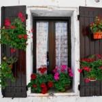 Да украсим прозорците с цветя
