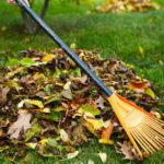 Основно почистване на двора