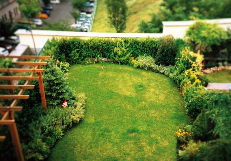 Добре почистен двор